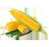 Entreprises de Agro-alimentaire